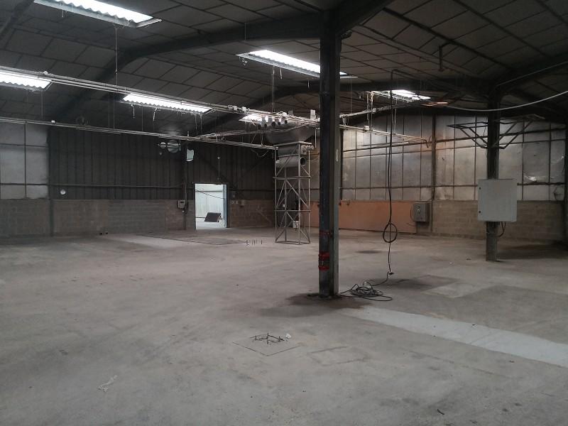 Vente entreprise - Finistere (29) - 2900.0 m²