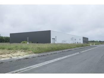 Vente entreprise - Finistere (29) - 170.0 m²